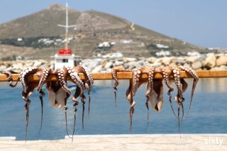paros irene hotel octopus
